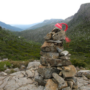 Telephone-wire basket in progress, resting on top of a big cairn looking out over the treetops of the Little Fisher valley, Tasmania.
